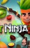 Android Fruit Ninja