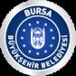 Bursa BB 3D Kent Rehberi