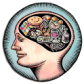 Beyin Testi