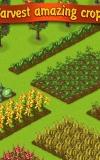 Lucky Fields