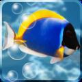 Aquarium Free – Canlı Duvar Kağıdı