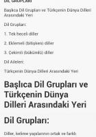 Dil Bilgisi Kuralları