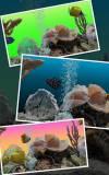 Marine Aquarium 3.2