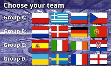 EURO 2012 Football/Soccer Game -2