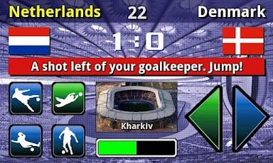 EURO 2012 Football/Soccer Game -4